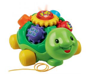 Lernspaß Schildkröte